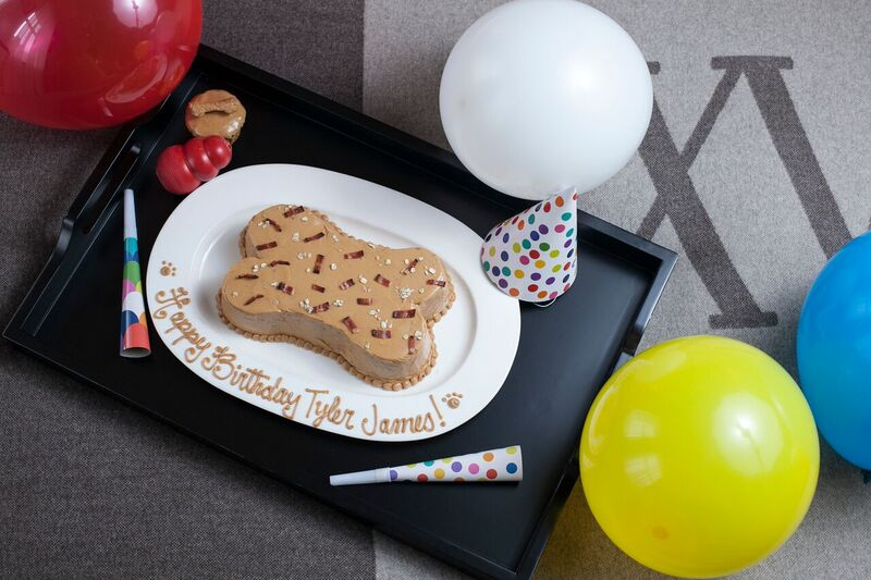 A peanut butter dog friendly birthday cake amenity for our special fur guests.